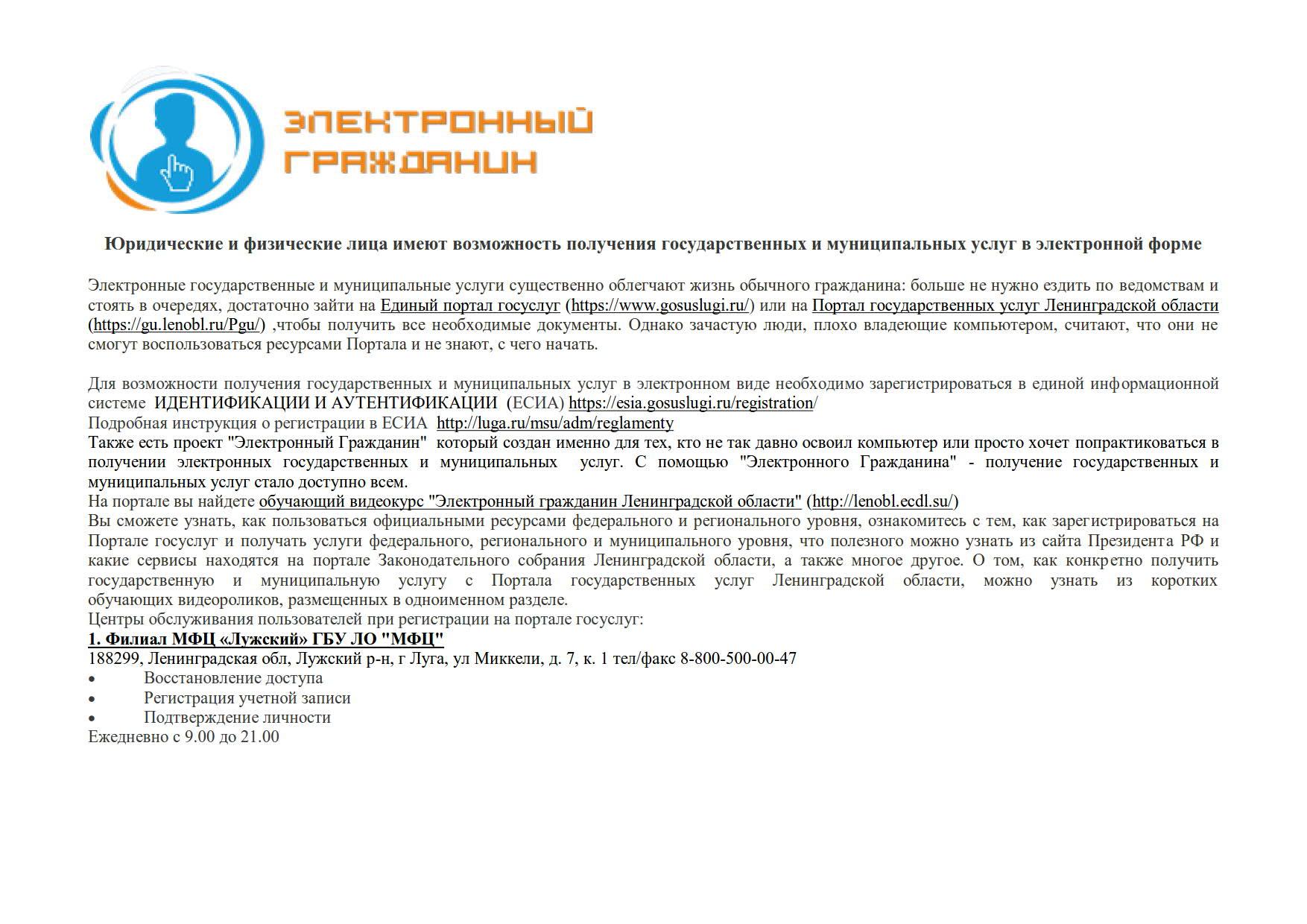 электронный гражданин_1
